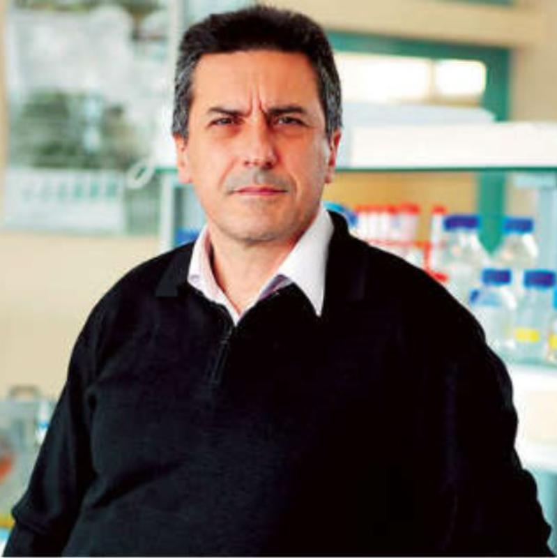 Dimitris Kouretas, PhD